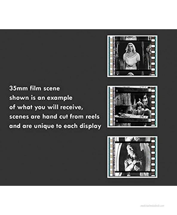 The MUMMY 1932 Boris Karloff Universal Horror Monster Movie 35mm Film Cell Display!